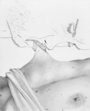 Nipple (Close Up), 2007 - pencil on paper - 43.2 x 35.5 cm (17 x 14 in)